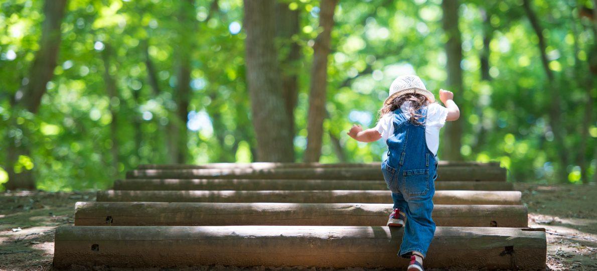 森の中を歩く少女